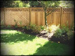 bamboo fencing as inexpensive diy or
