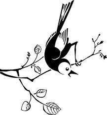 A Cute Bird Macbook Decal