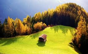 beautiful nature wallpapers best