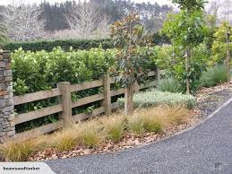Btm Interlocking Post And 3 Rail Fence With Griselinia Lucida Hedge Hedges Landscaping Garden Gates And Fencing Hedges
