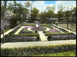 geometric beauty of parterre