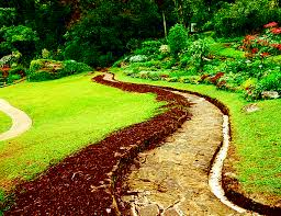 walkway path landscapes nature sri