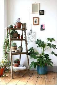 vertical wall garden indoor
