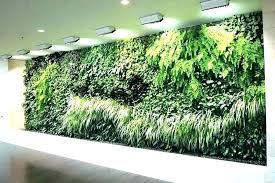 succulent wall garden kit