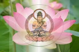 Aprende Todo Lo Necesario Sobre La Flor De Loto Budismo Aquí