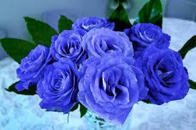صور بوكيه ورد ازرق لعشاق اللون الازرق اجمل بوكيهات ورد ازرق