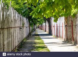 Page 2 Building Bamboo Fence High Resolution Stock Photography And Images Alamy