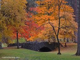 autumn fall spokane wonderworld otw