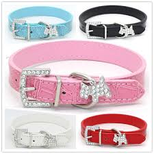 croc leather dog collar rhinestones