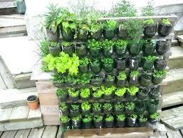 veggie edible garden ideas designs deck