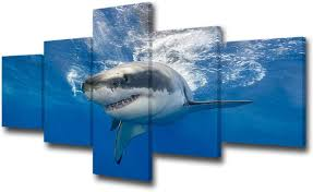 Amazon Com Tumovo 5 Piece Great White Shark Paintings Wall Art Canvas Prints Black And White Large Animal Wall Poster Artwork Pictures For Home Office Wall Decorations Framed Ready To Hang 50