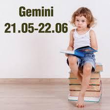 Gemini Decals