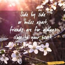 friendship quotes every bf dearquote