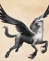 Hippogriff | Harry Potter Wiki | Fandom