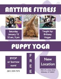 puppy yoga presented by anytime fitness