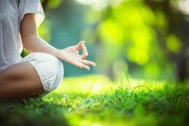 Introducing Yoga in the Park | Creative Options Regina | COR