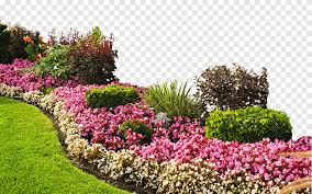 flowers flower garden landscaping