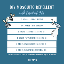 10 essential oils for repelling bugs