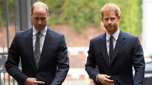 Rift between Prince William, Prince Harry laid bare in new book extract |  CTV News