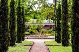 mercer botanic gardens renaissance