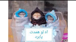 صور كاريكاتير عن البرد الشديد Partie2 Youtube