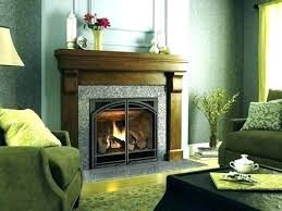 napoleon gas fireplace safety screen