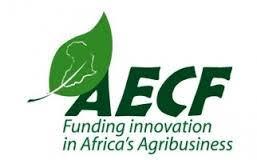 """Image result for Africa Enterprise Challenge Fund"""""""