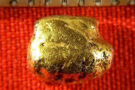 alaskan gold nugget natural and