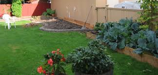 vegetable garden design should be