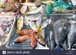 seafood store. Fresh seafood market ...