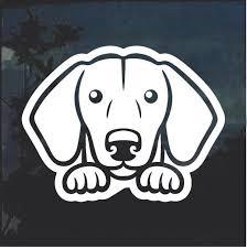 Dachshund Peeking Dog Window Decal Sticker A2 Custom Sticker Shop