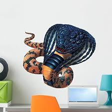 Amazon Com Rinkhals Cobra Wall Decal By Wallmonkeys Peel And Stick Graphic 24 In W X 19 In H Wm187287 Home Kitchen
