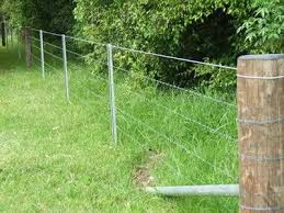 Barbed Wire Field Fence Steel Fence Posts Pet Fence
