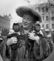 """Archivetvmusings trên Twitter: """"Hylda Baker and her pet monkeys ..."""