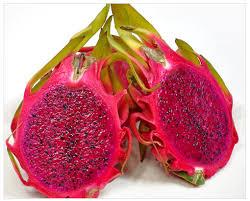 五款火龙果减肥食谱女性减肥食谱的作法与步骤- 京东