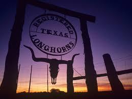 best 54 texas wallpaper on