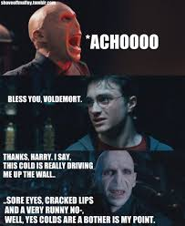 funny quotes from the harry potter books quotesgram