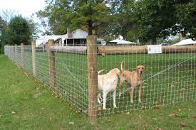 8 Ft Wood And Welded Wire Backyard Fence Google Search