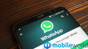Come effettuare (video) chiamate su WhatsApp con 8 partecipanti ...