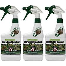 Amazon Com Liquid Fence Deer Rabbit Repellent Ready To Use 32 Ounce 100047366 Home Pest Repellents Garden Outdoor