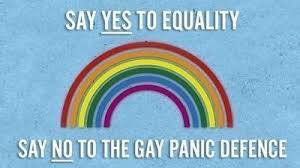 Image result for gay panic defense