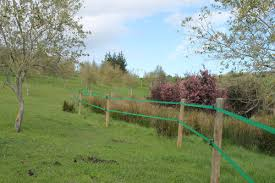 Equisol An Innovative Horse Fencing Solution