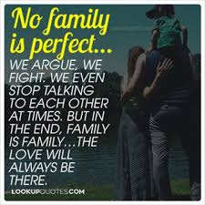 no family is perfect we argue we fight