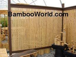 Bamboo Fence Solid Cane