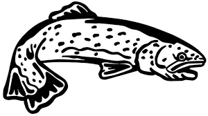 Trout Decal Fsn1 229 Boat Truck Window Stickers Wildlife Decal