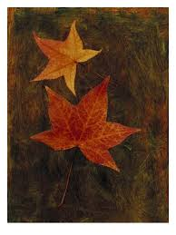 Maple Leaf On Painted Texture Wall Decal Allposters Com