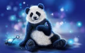cute panda bear wallpapers hd