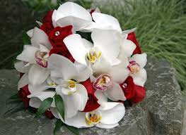ورد أحمر وأبيض انستقرام Red Red White Wedding Bouquets صور ورد