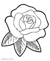 free rose flower drawing free