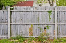 Wooden Fence Rotting Precautionary Actions The Fence Masters